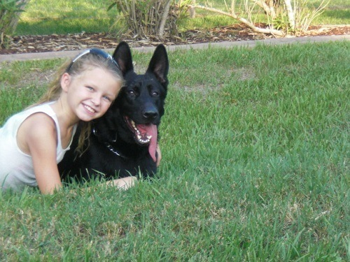 Kid with Black GSD