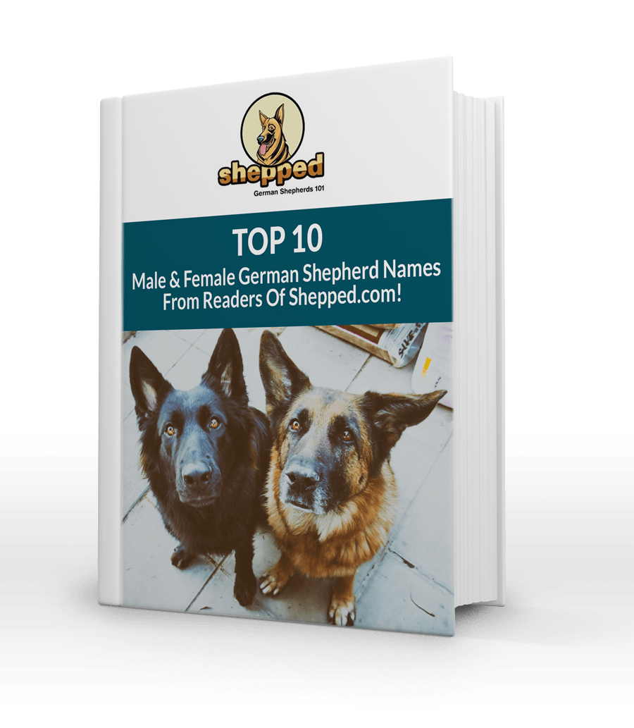 Top 10 Male And Female GSD Names