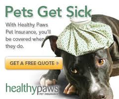 healthy paws insurance review