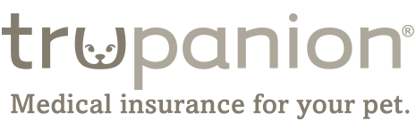 Trupanion Dog Insurance Review
