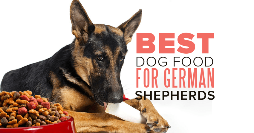 Best Dog Food For German Shepherds