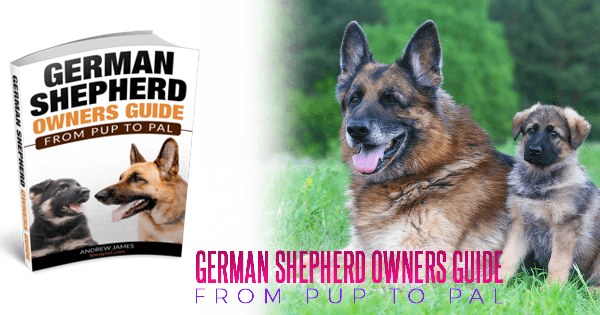German Shepherd Owners Guide