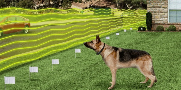 How to contain your german shepherd with an invisible fence invisible wireless dog fence solutioingenieria Gallery