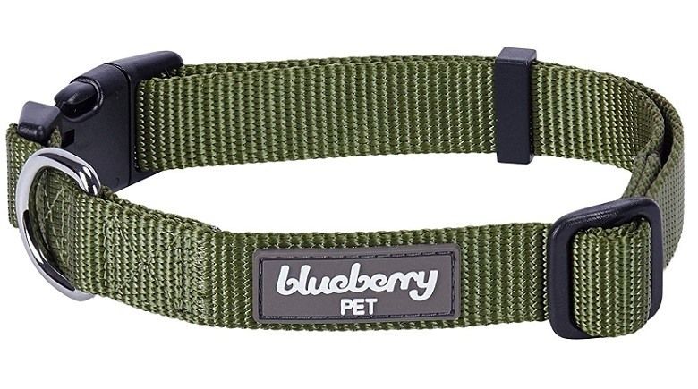 Blueberry Personalized Dog Collar review