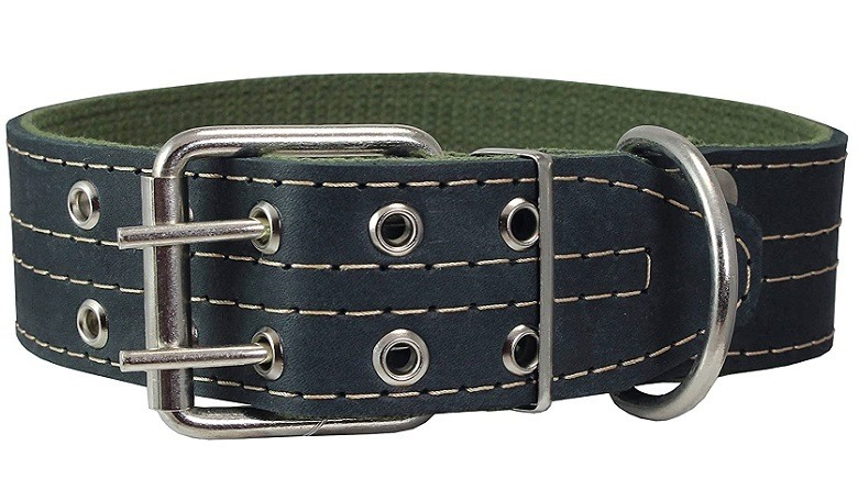 Dogs My Love Dog Collar review